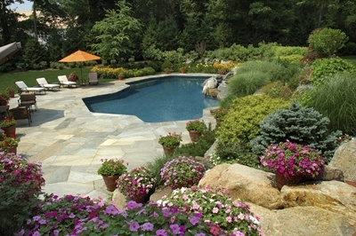 pool maintenance social circle ga